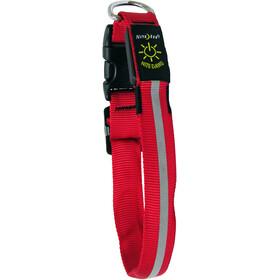 Nite Ize NiteDawg LED-Collar, red